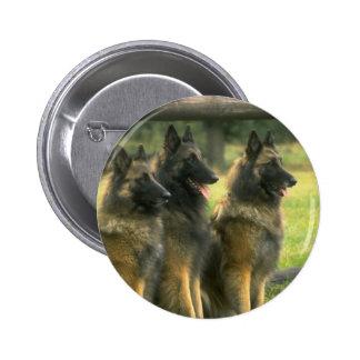 German Shepherd  Dogs Button