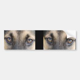 German Shepherd Eyes Bumper Sticker