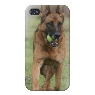 "German Shepherd Female ""Vita"" Cases For iPhone 4"