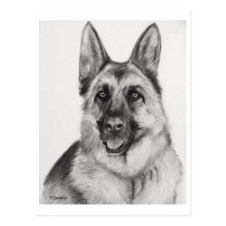 German Shepherd Fine Art Postcard