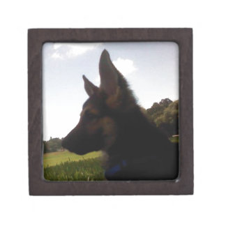 German Shepherd Gift Box