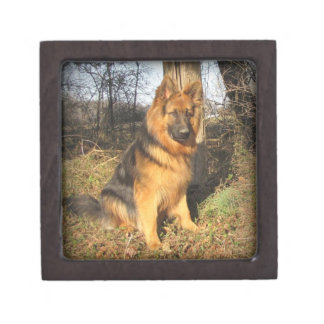 German Shepherd gift or keepsake Box