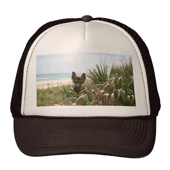 German Shepherd Hat Beachgrass