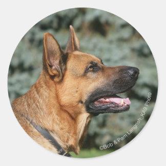 German Shepherd Headshot 1 Classic Round Sticker
