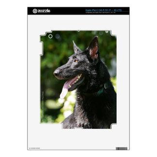German Shepherd Headshot 2 Decals For iPad 3