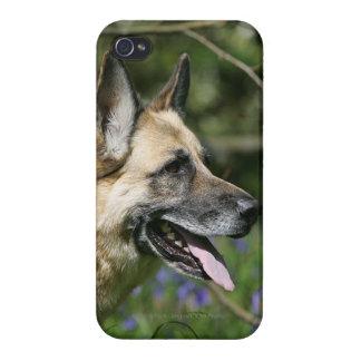 German Shepherd Headshot 3 Covers For iPhone 4
