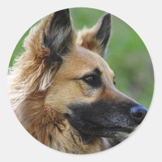 German Shepherd Headshot Classic Round Sticker