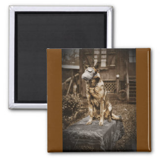German Shepherd in Gas Mask 2 Inch Square Magnet