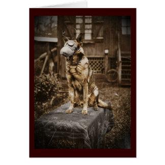 German Shepherd in Gas Mask Greeting Cards