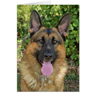 German Shepherd in Spring Card