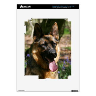 German Shepherd iPad 3 Skin