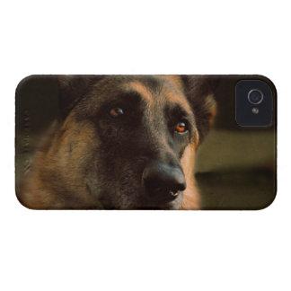 German Shepherd iPhone 4 Case