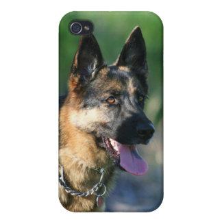 German Shepherd Cases For iPhone 4