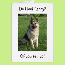 "GERMAN SHEPHERD IS SO HAPPY U R ""40"" NOT HIM CARD"