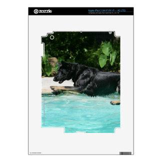 German Shepherd Jumping in Water iPad 3 Decals