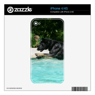 German Shepherd Jumping in Water Skin For The iPhone 4S