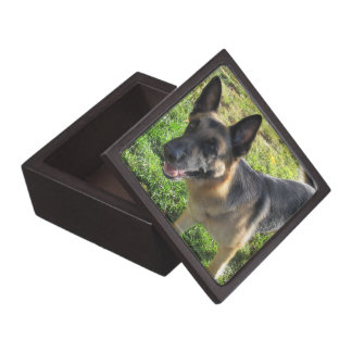 German Shepherd Keepsake Box