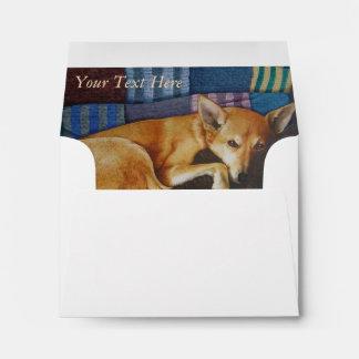 german shepherd labrador mixed breed dog art envelope