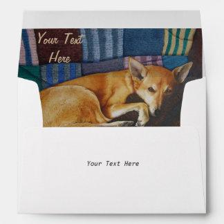 german shepherd labrador mixed breed dog portraits envelope