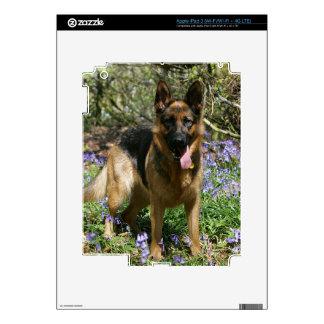 German Shepherd Laying Down iPad 3 Decal