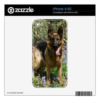 German Shepherd Laying Down Skins For iPhone 4S