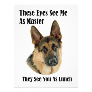 German Shepherd Master Full Color Flyer