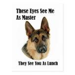 German Shepherd Master Postcards