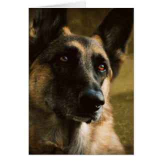German Shepherd Notecard