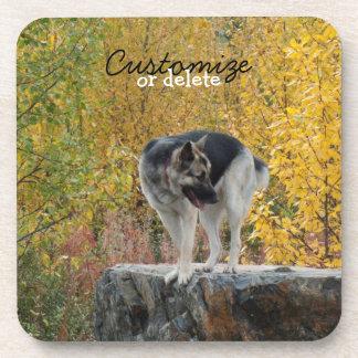 German Shepherd on a Rock; Customizable Beverage Coaster