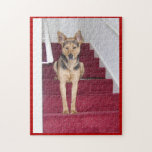 German Shepherd on Stairs Jigsaw Puzzles