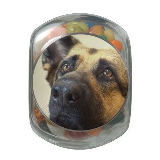 German Shepherd  Picture Glass Candy Jar