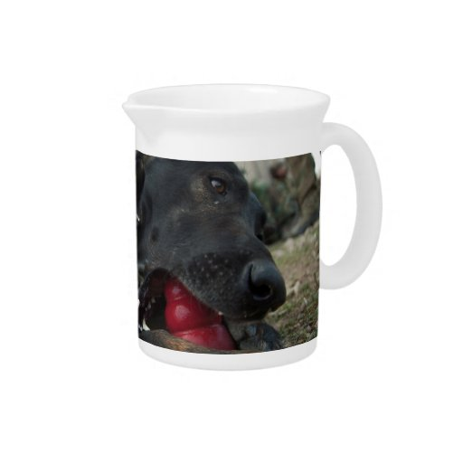 German Shepherd Playing With Dog Toy Beverage Pitcher