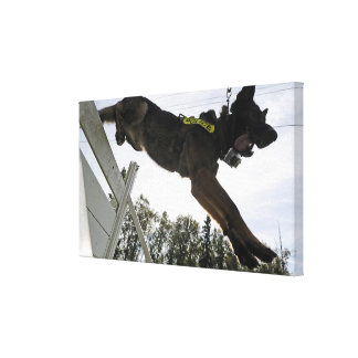 German Shepherd Police Dog Stretched Canvas Print