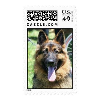 German Shepherd postage