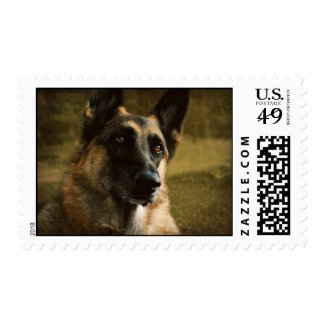 German Shepherd Postage Stamp