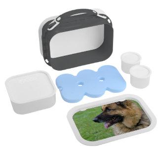 German Shepherd Profile Lunch Box