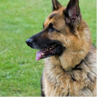 German Shepherd Profile Statuette