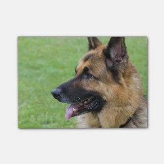 German Shepherd Profile Post-it® Notes