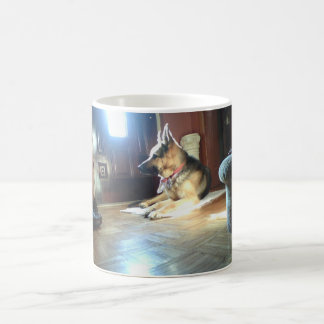 German Shepherd protecting house, mug
