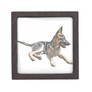 German Shepherd pup Gift Box