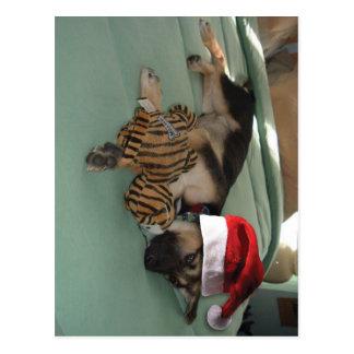 German Shepherd Pup with Santa Hat Postcard