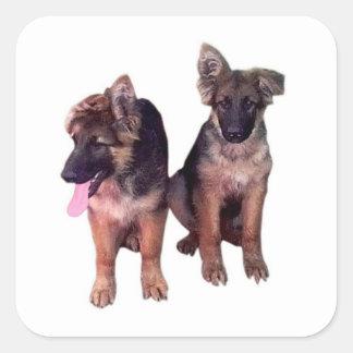 German Shepherd puppies Custom Sticker