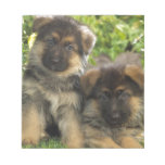 German Shepherd Puppies Memo Note Pads