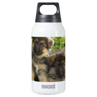 German Shepherd Puppies Thermos Water Bottle
