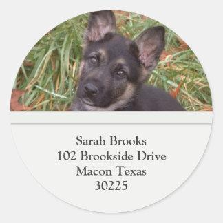 German Shepherd Puppy Address Labels Classic Round Sticker