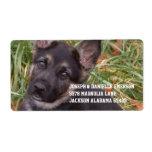 German Shepherd Puppy Address Sticker Shipping Label