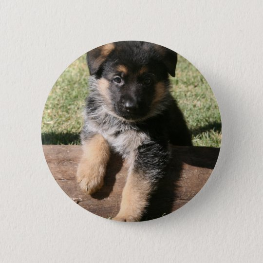 "German Shepherd Puppy ""Big Max"" Pinback Button"