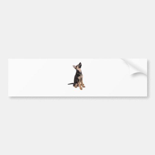 German shepherd puppy car bumper sticker