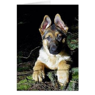 German-Shepherd Puppy Cards