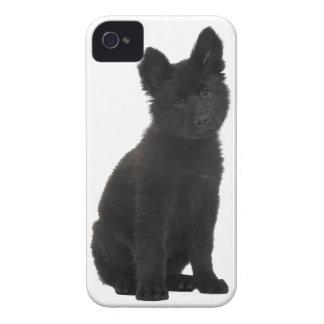 German Shepherd Puppy Case-Mate iPhone 4 Case